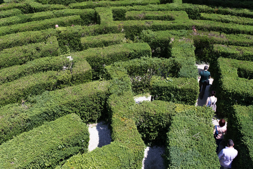 June 2017.Visitors walk in the hedge maze at Villa Pisani, seen from behind the hedge, baroque villa at Stra on the mainland of the Veneto, northern Italy