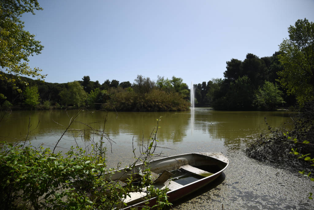 Natural reserve by morning in Pescara