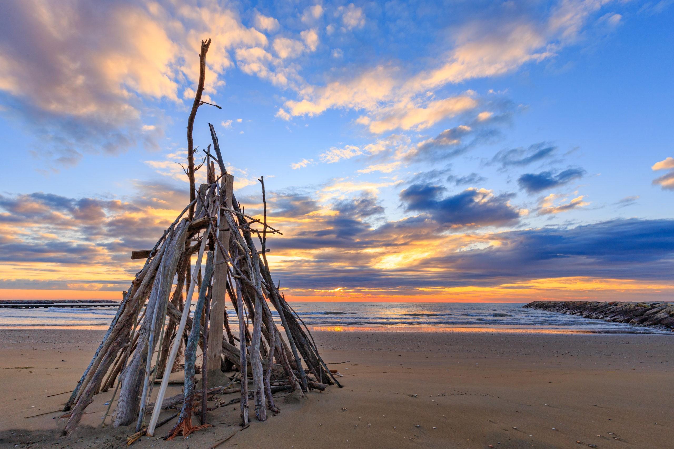 gałęzie gotowe na ognisko, fot. shutterstock.com