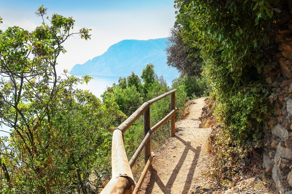 Walkway through the forest on the mountains in Cinque Terre national park, Italy.