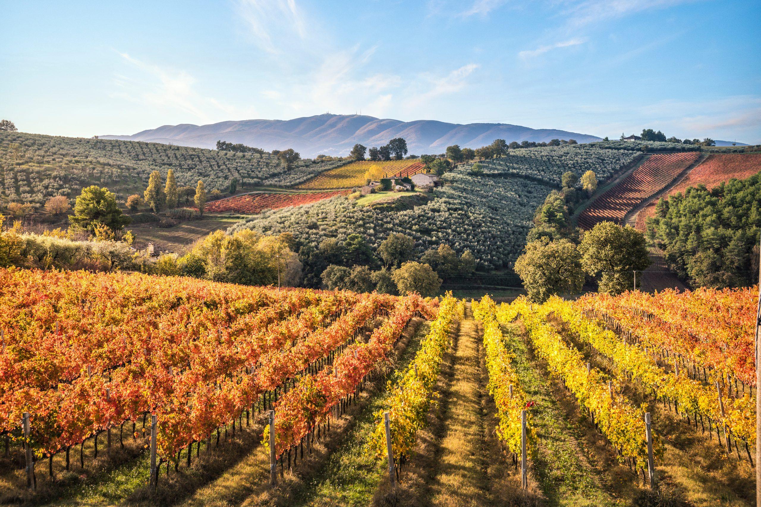Umbria, Włochy, fot. shutterstock.com