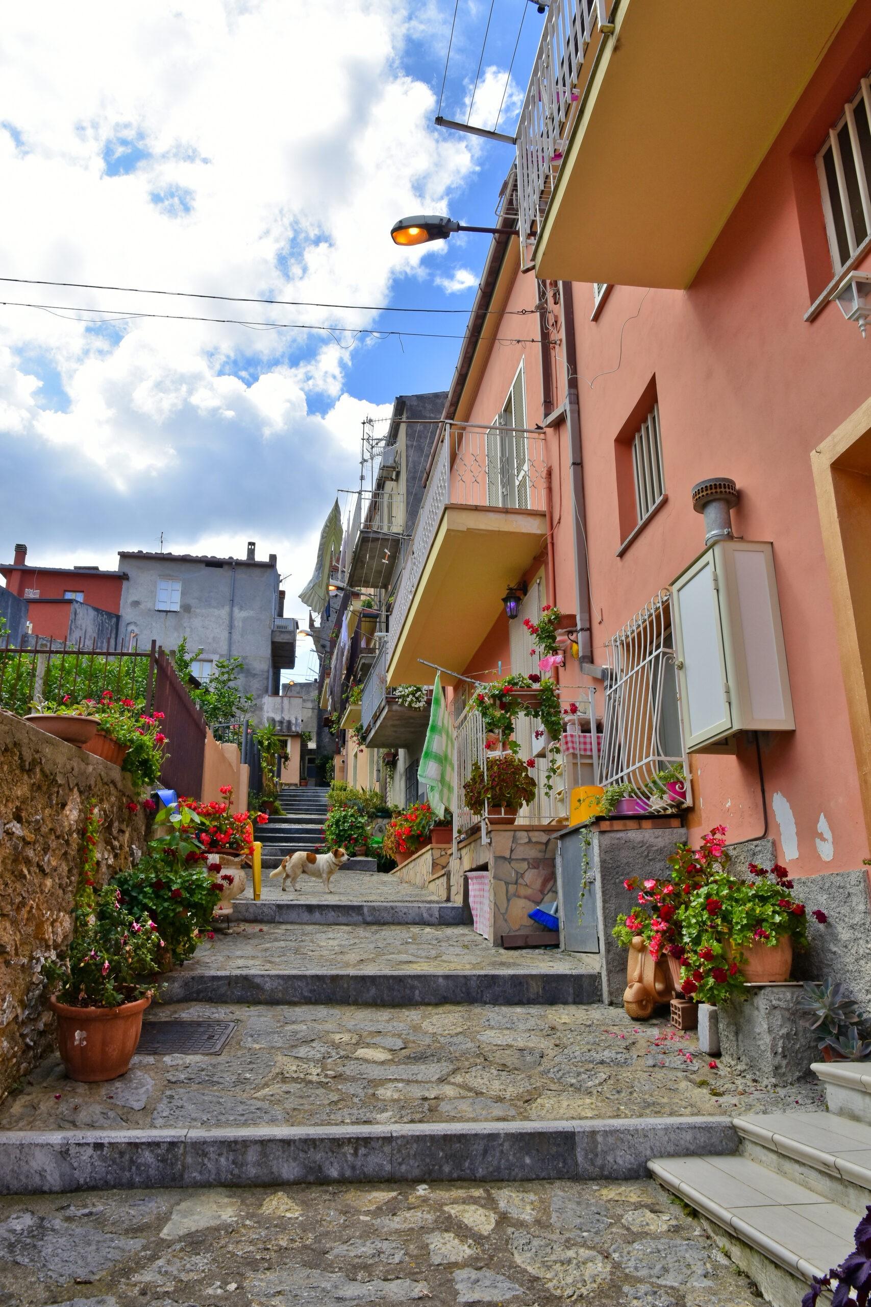 Grisolia, Włochy, Schody pomiędzy małymi domami w górskiej wiosce w regionie Kalabria., licencja: shutterstock/By Giambattista Lazazzera