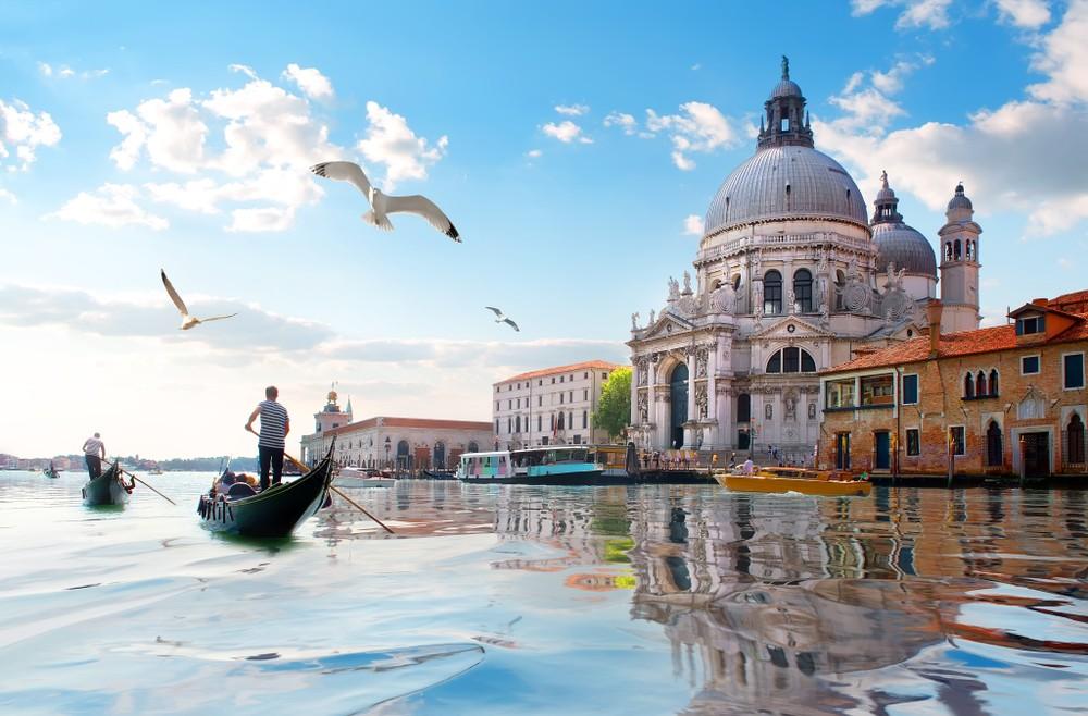 Mewy i stara katedra Santa Maria della Salute w Wenecji, Włochy, fot. shutterstock.com