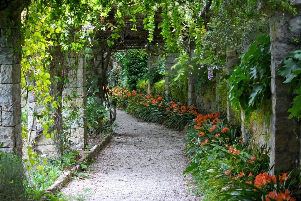 Green bower in Villa Hanbury Botanic Gardens, near Ventimiglia, Italian Riviera