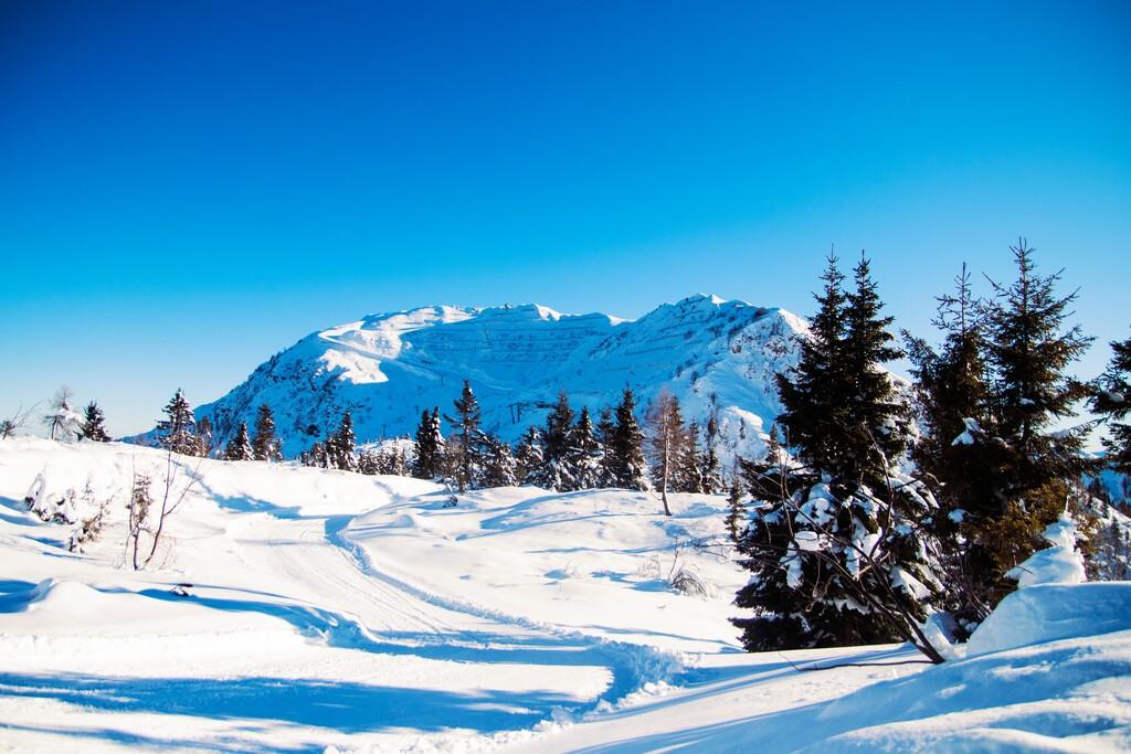 Italian Alps Ravascletto Ski Monte Tamai